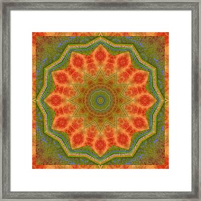 Healing Mandala 14 Framed Print by Bell And Todd