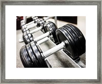 Healthclub Free Weights On A Rack Framed Print by Paul Velgos