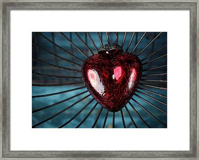 Heart In Cage Framed Print by Nailia Schwarz