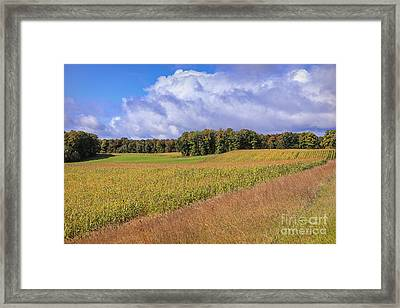 Heartland Harvest Days Framed Print by Rachel Cohen
