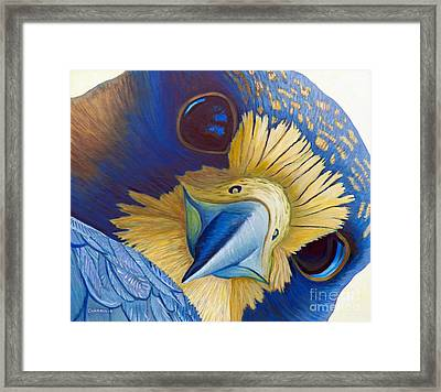 Heaven And Earth Framed Print by Brian  Commerford
