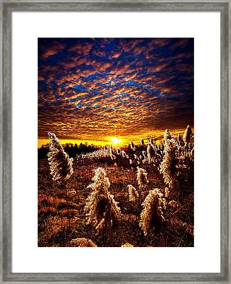 Heaven And Earth Framed Print by Phil Koch