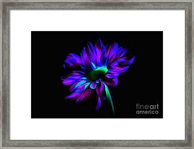 Heaven Sent Framed Print by Krissy Katsimbras