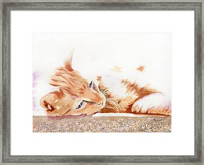 Heavenly Sunshine Framed Print by Marsha Elliott