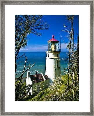 Heceta Lighthouse I Framed Print by Dale Stillman
