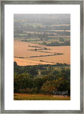 Hedgerows Of England Framed Print by Andy Smy