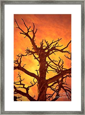 Hell Framed Print by Charles Dobbs