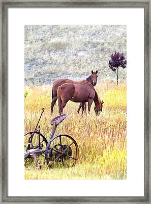 Eat Free Framed Print featuring the photograph Hello by Naman Imagery