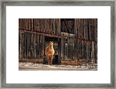 Hello Sweetheart Framed Print by Lois Bryan