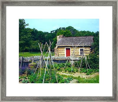 Herb And Vegetable Garden Framed Print by Penny Neimiller