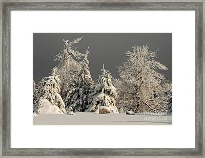 Here Comes The Sun Framed Print by Lois Bryan