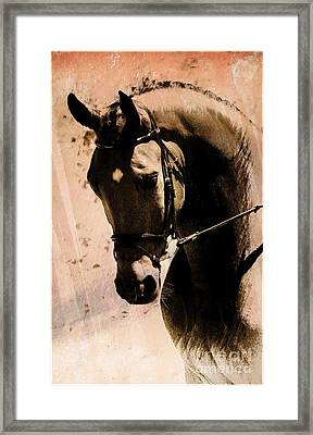 Here I Am Framed Print by Clare Bevan