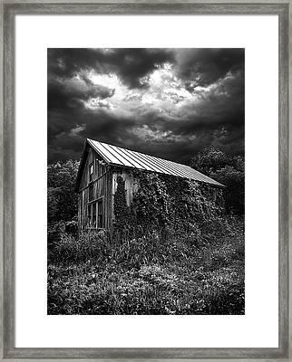 Hereafter Framed Print by Phil Koch
