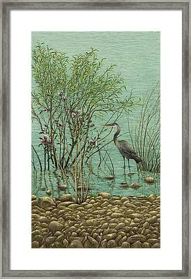 Heron At Crabtree Creek Framed Print by Mary Ann King