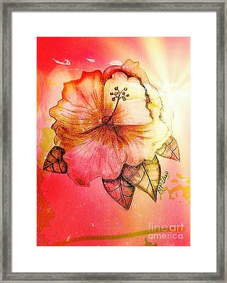 Hibiscus 16-01 Framed Print by Maria Urso