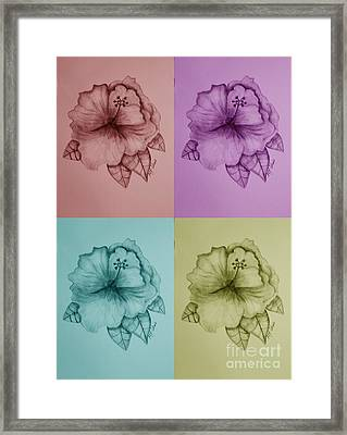 Hibiscus 16-02 Framed Print by Maria Urso