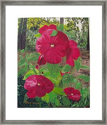 Hibiscus 2 Framed Print by Sharon  De Vore