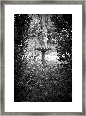 Hidden Bird Bath  Framed Print by Dustin K Ryan