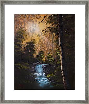 Hidden Brook Framed Print by C Steele