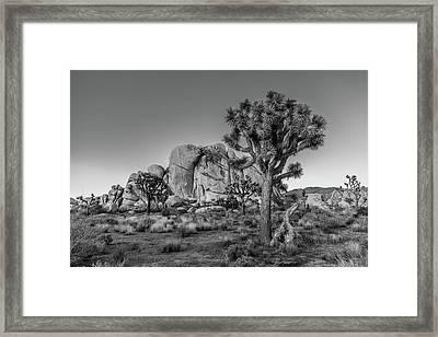 Hidden Valley Rock Framed Print by Peter Tellone
