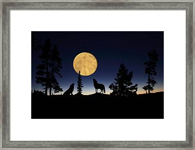 Hidden Wolves Framed Print by Shane Bechler