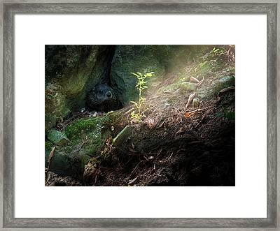 Hiding In The Rocks Framed Print by Bob Orsillo