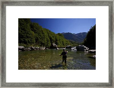 High Country Trout Framed Print by Julian Wicksteed