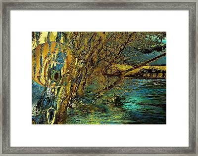 High Water In The Meadows Framed Print by Anne Weirich