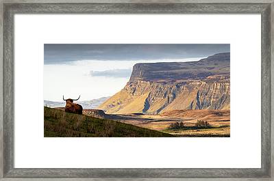 Highland Coo With A View Framed Print by Dave Bowman