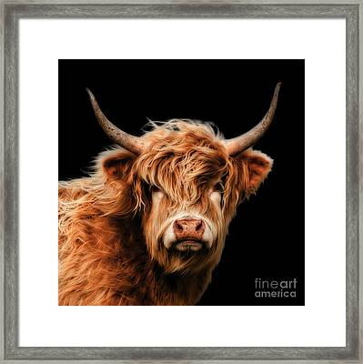 Highland Moo Framed Print by Linsey Williams