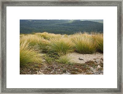 Highland Rush - White Mountains New Hampshire Usa Framed Print by Erin Paul Donovan