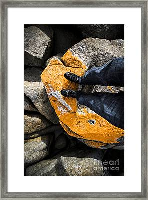 Hiking The Bay Of Fires Framed Print by Jorgo Photography - Wall Art Gallery