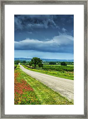 Hill Country Of Texas Framed Print by Thomas R Fletcher