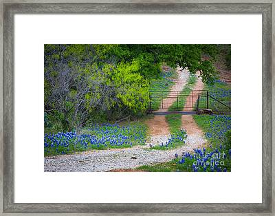 Hill Country Road Framed Print by Inge Johnsson