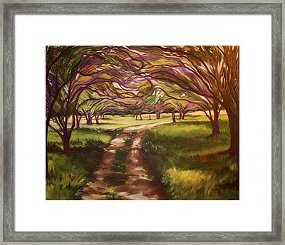 Hill Country Stroll Framed Print by Suzaine Smith