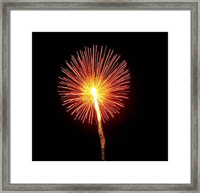 Hilliard Ohio Firework 1  Framed Print by Beth Akerman