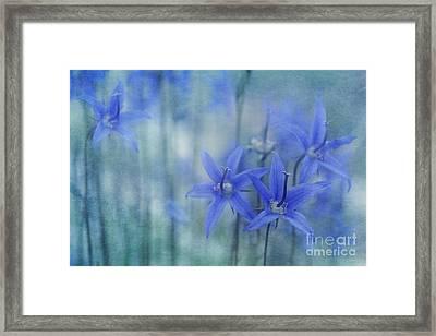 Hillside Blues Framed Print by Priska Wettstein