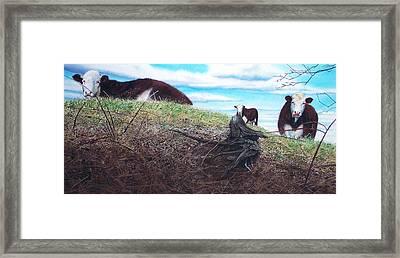 Hillside Retreat Framed Print by Denny Bond