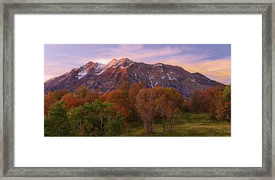 Hint Of Fall Framed Print by Chad Dutson
