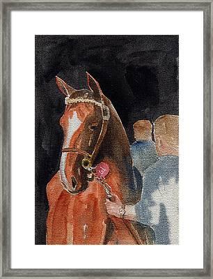 Hip No. 61 Chestnut Colt Framed Print by Arline Wagner