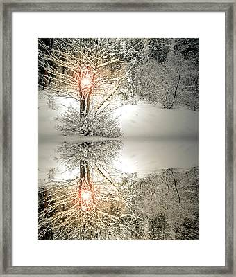 Hold This Light In Your Heart Framed Print by Tara Turner
