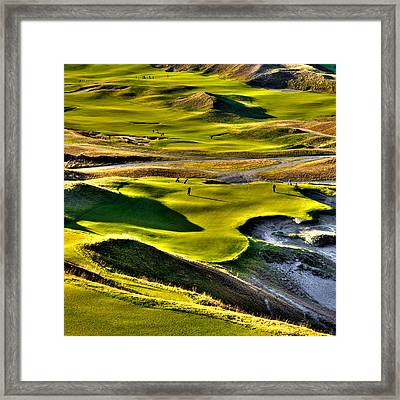 Hole #9 At Chambers Bay Framed Print by David Patterson