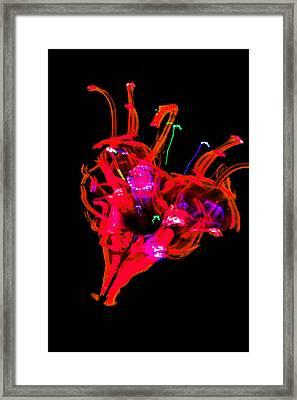 Hole In My Heart Framed Print by Az Jackson