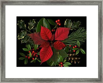 Holiday Greenery Framed Print by Deborah J Humphries