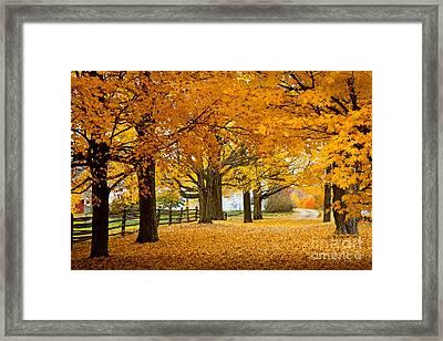 Hollis Farm Framed Print by Susan Cole Kelly