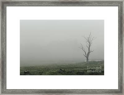 Hollow Framed Print by Andrew Paranavitana