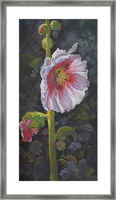 Hollyhock Framed Print by Heather Coen