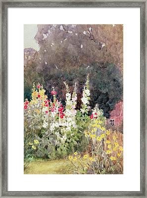 Hollyhocks Framed Print by Helen Allingham