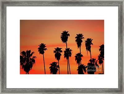 Hollywood Sunset Framed Print by Mariola Bitner
