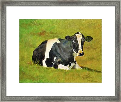 Holstein Cow In Pasture Framed Print by Phyllis Tarlow